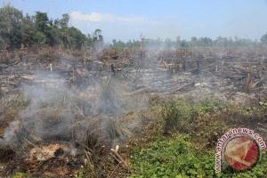 BNPB akan kirim heli untuk padamkan kebakaran lahan di Aceh
