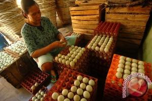 Garam mahal, harga telur asin ikut naik