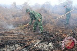 Asap di Aceh Barat meningkat dan makin mengganggu