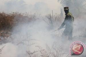 BMKG : enam titik panas terpantau di Riau