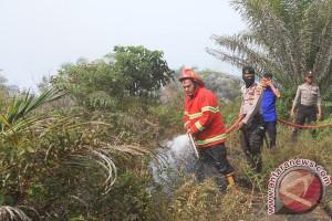 BMKG: 49 titik panas terpantau di Aceh