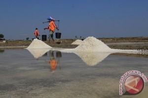 Pabrik garam Bantul stop operasi gara-gara kemarau basah