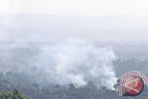 Karhutla selalu terulang di Aceh dalam 10 tahun terakhir