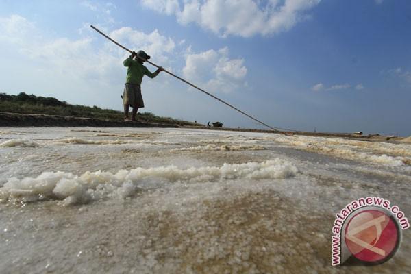 Harga garam dapur di Mesuji Lampung melonjak