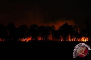 Gelombang panas dan kekeringan di Italia picu kebakaran hutan