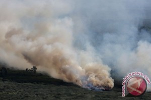 Kebakaran Lahan Di OKI
