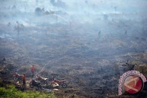 Satgas Karhutla padamkan api di Jambi