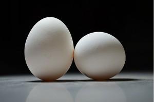 Telur terkontaminasi insektisida menyebar ke Inggris dan Prancis