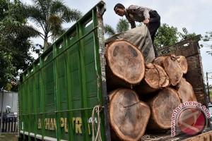KLHK amankan tiga kontainer kayu ilegal di Riau