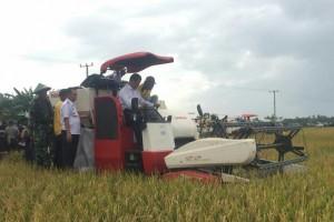 Beras surplus di Wajo Sulsel, Mentan diberi gelar penyelamat petani
