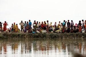 PBB: eksodus Rohingya ke Bangladesh sudah capai 313.000 orang