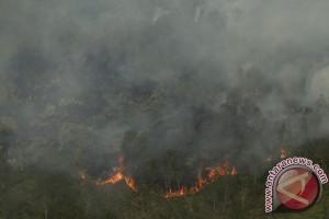 Kebakaran Hutan dan Lahan Ogan Ilir