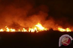 Korem 044/Garuda Dempo operasikan tim patroli malam kebakaran hutan-lahan
