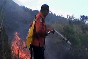 Kebakaran hutan Gunung Guntur meluas