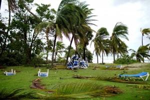 Badai Irma rusak tanaman tebu di Kuba