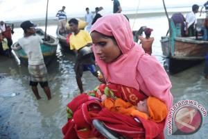 Etimologi dan anatomi Rohingya