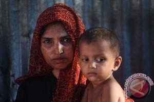 Indonesia ambil peran terdepan soal Rohingya