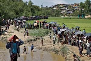 Gelombang baru pengungsi Rohingya padati Bangladesh