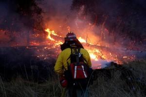 Puluhan orang masih hilang dalam kebakaran hutan di California