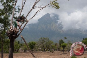 Aktivitas Gunung Agung Masih Fluktuaktif