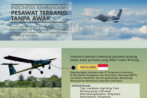 Indonesia Kembangkan Pesawat Terbang Tanpa Awak