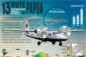 Rute baru penerbangan perintis di Papua