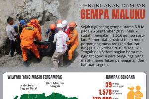 Penanganan dampak gempa Maluku