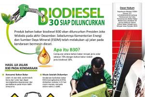 Biodiesel B30 siap diluncurkan