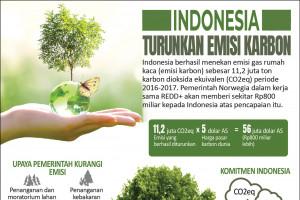 Indonesia turunkan emisi karbon