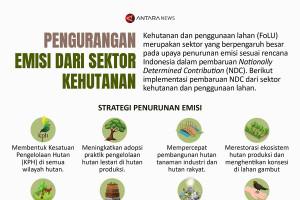 Pengurangan emisi dari sektor kehutanan