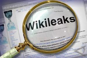 Remaja Pro-WikiLeaks Serang Visa dan Mastercards