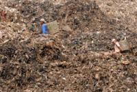 Sampah Bantar Gebang Hasilkan Listrik 120 Kva
