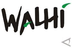 Walhi: Hutan Sumsel Mayoritas Rusak