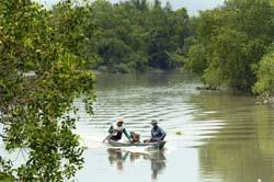 Tidak Ada Penjajahan Ekologis di Indonesia