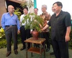 Toyota Sisihkan Rp4 Miliar untuk Tanam Pohon